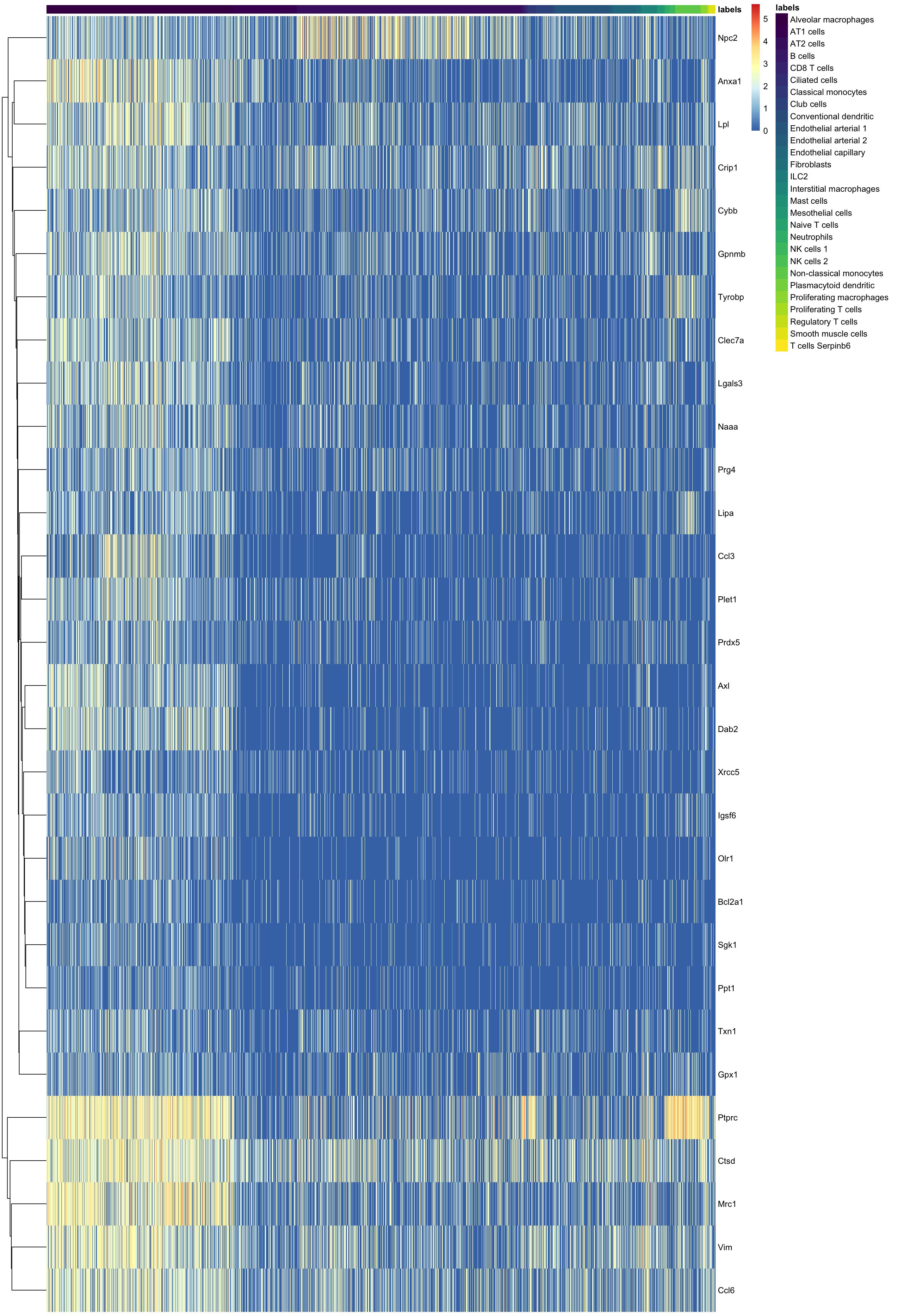heatmap output