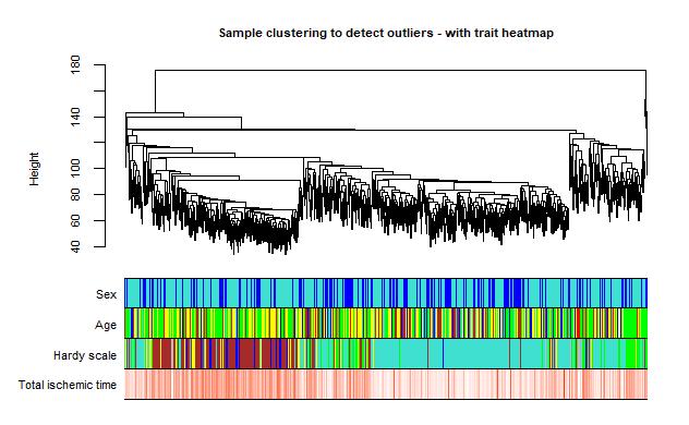 Sample dendrogram and heatmap